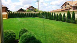 Formiranje travnjaka setvom smeše trava